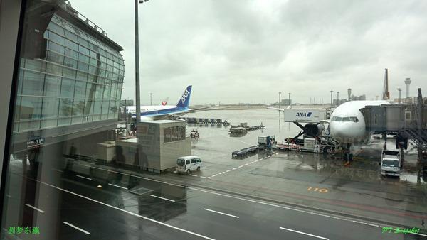 羽田空港/Haneda Airport