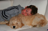 Gorgeousdoodle Sleeping Doodle!