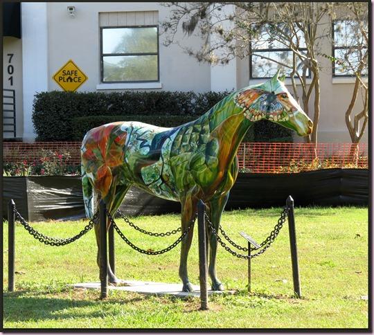 horseIMG_4622