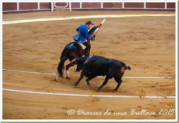 Toros Feria 2015-9762