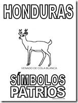 simbolos patrios honduras 1