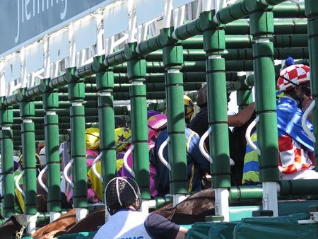 race 6_barriers
