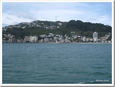 Oriental Bay from Wellington