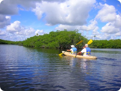 Loxahatchee River kayak tour