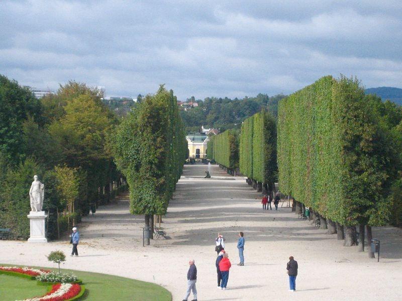 schönbrunn-palace-trimmed-trees-2