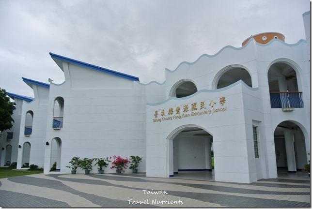 台東豐源國小 (7)