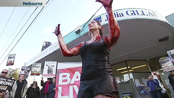 live export protest