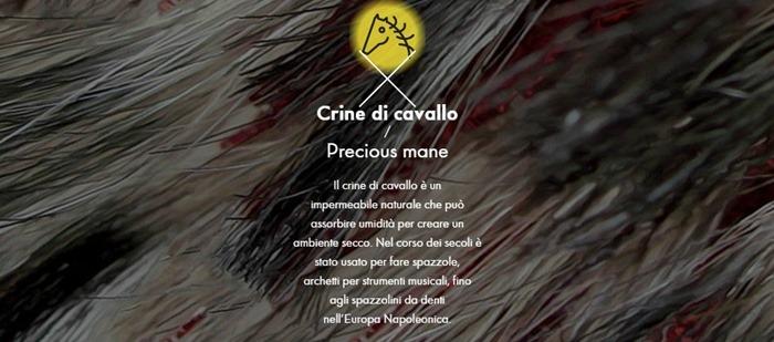 crine_di_cavallo