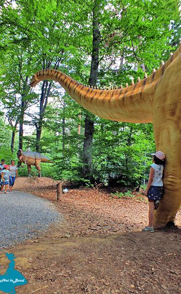 dinozauri dino parc rasnov