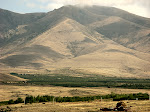 Near Mount Ara, Armenia.