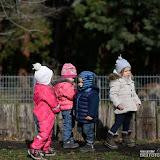 46_Rosensteinpark_18. Februar 2016.jpg