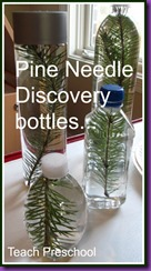 Pine-Needle-Discovery-Bottles