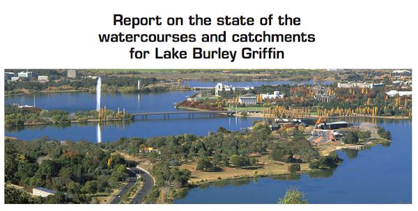 report screenshot