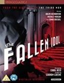 Fallen Idol (Vintage Classics)