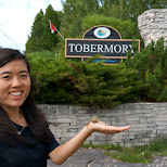 Brittany found a toad in Tobermory in Tobermory, Ontario, Canada