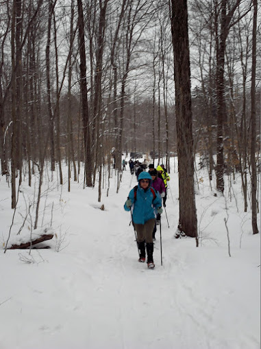 Another Bald Mountain winter hike