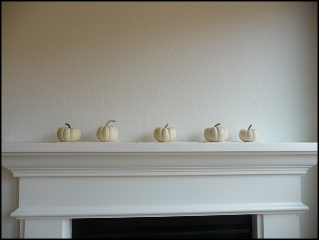 New house pumpkins and flowers (2)