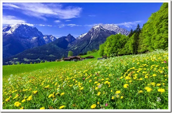 mountain-meadow-desktop-background-601843