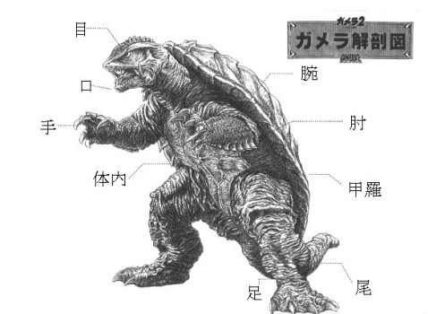 gamera2diagram