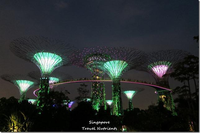 新加坡超級樹燈光秀 (24)