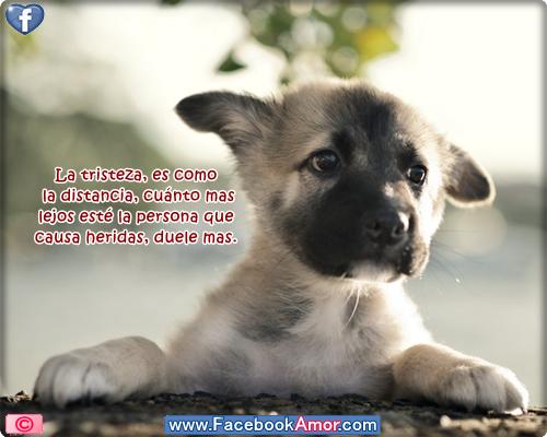 9 Tristes Imagenes De Despedida Para Un Amor Imposible  - Imagenes De Amor Tristes Para Facebook