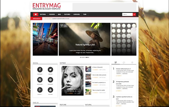entrymag-template