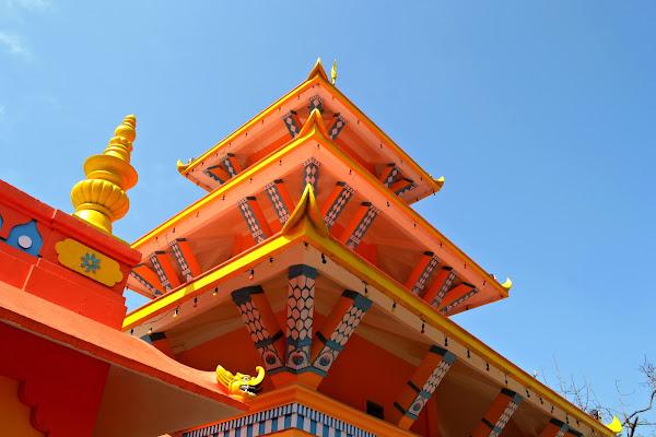 оранжевый храм дарджилинг