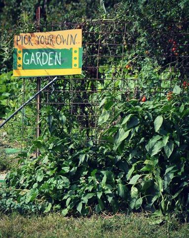 cheri b garden