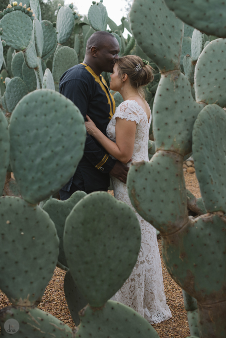 Hannah and Pule wedding Babylonstoren Franschhoek South Africa shot by dna photographers 1012.jpg
