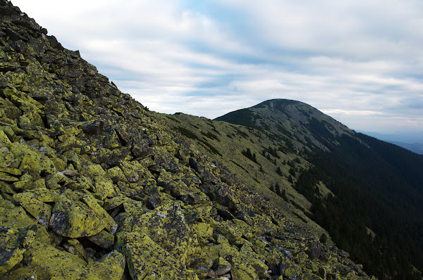 карпаты горы горганы