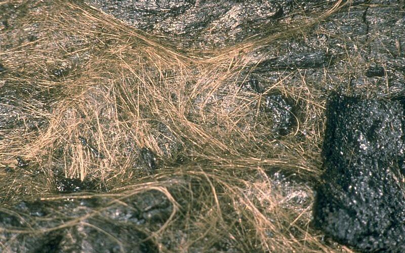 peles-hair-9