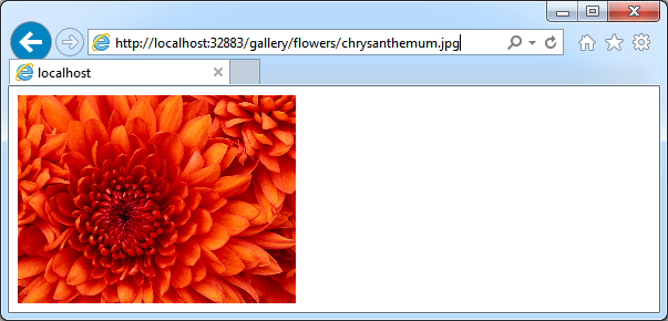 Sample content stored in CMS is displayed in the browser.