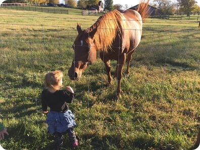 Kids with horse in Berryville, VA