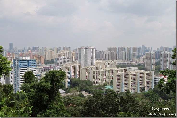 新加坡花柏山 (33)