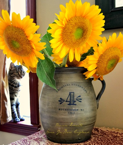 sunflowers jug kiki