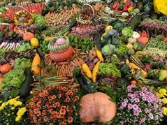 2015.09.13-029 légumes et fruits