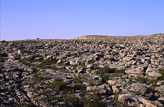 The Burren.