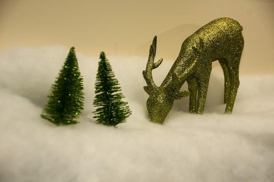 Green Deer by Camruin Kilsek - Public Holidays Christmas