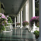 THE COLUMNS PORCH (2).jpg