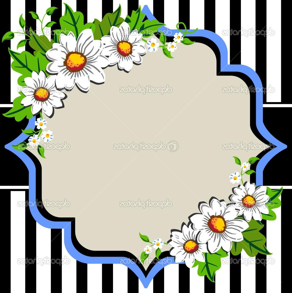 White daisy flowers frame with