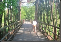 An iron bridge in the middle of farm country...