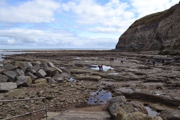 Staithes Rocks