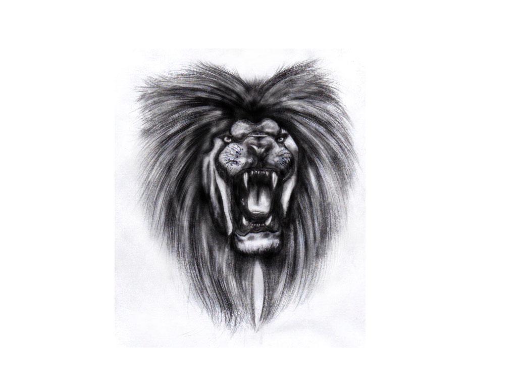 Penciled roaring lion