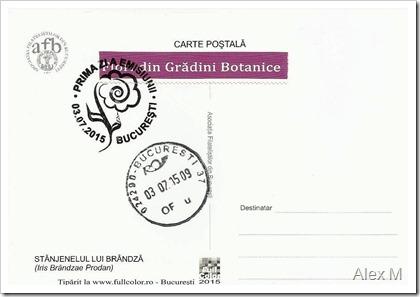 2071_3-30_Stanjenelul-lui-Brandza-verso