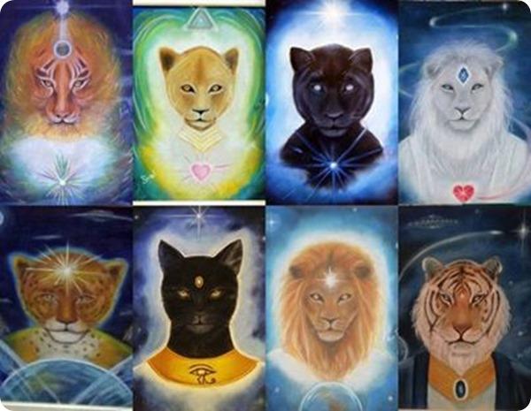 Feline-beings