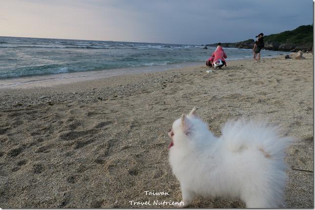 小琉球威尼斯海灘 (12)