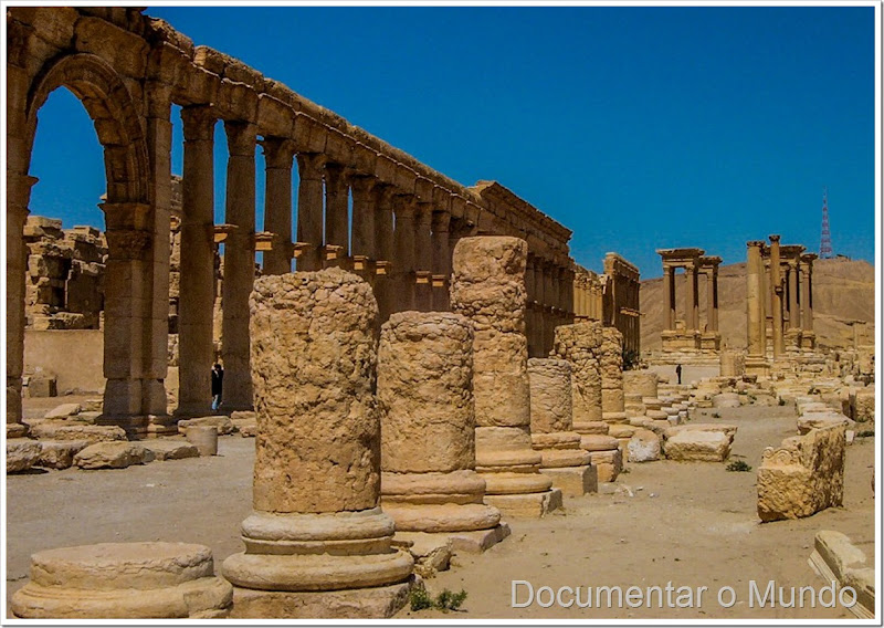 Colunata Palmira