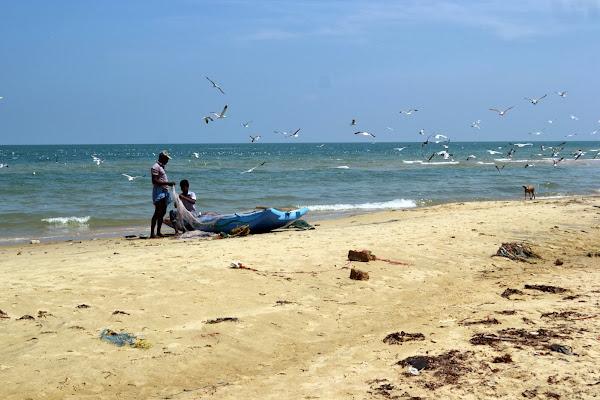 побережье, океан, рыбаки