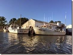 Piankatank boats