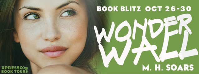 Book Blitz: Wonderwall by M.H. Soars